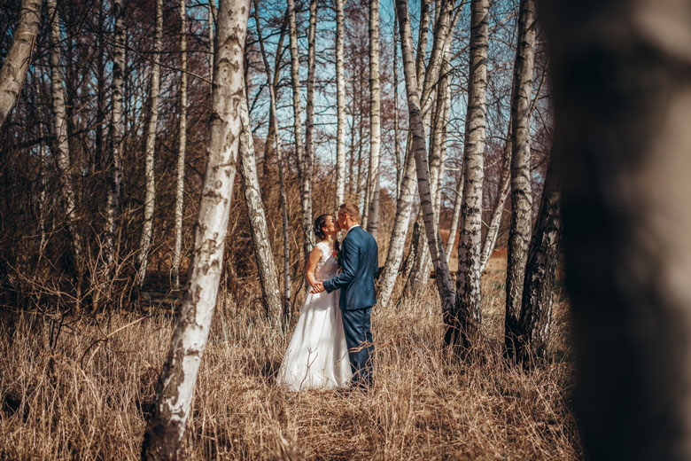 Hochzeitsfotos in der Natur im Birkenwald